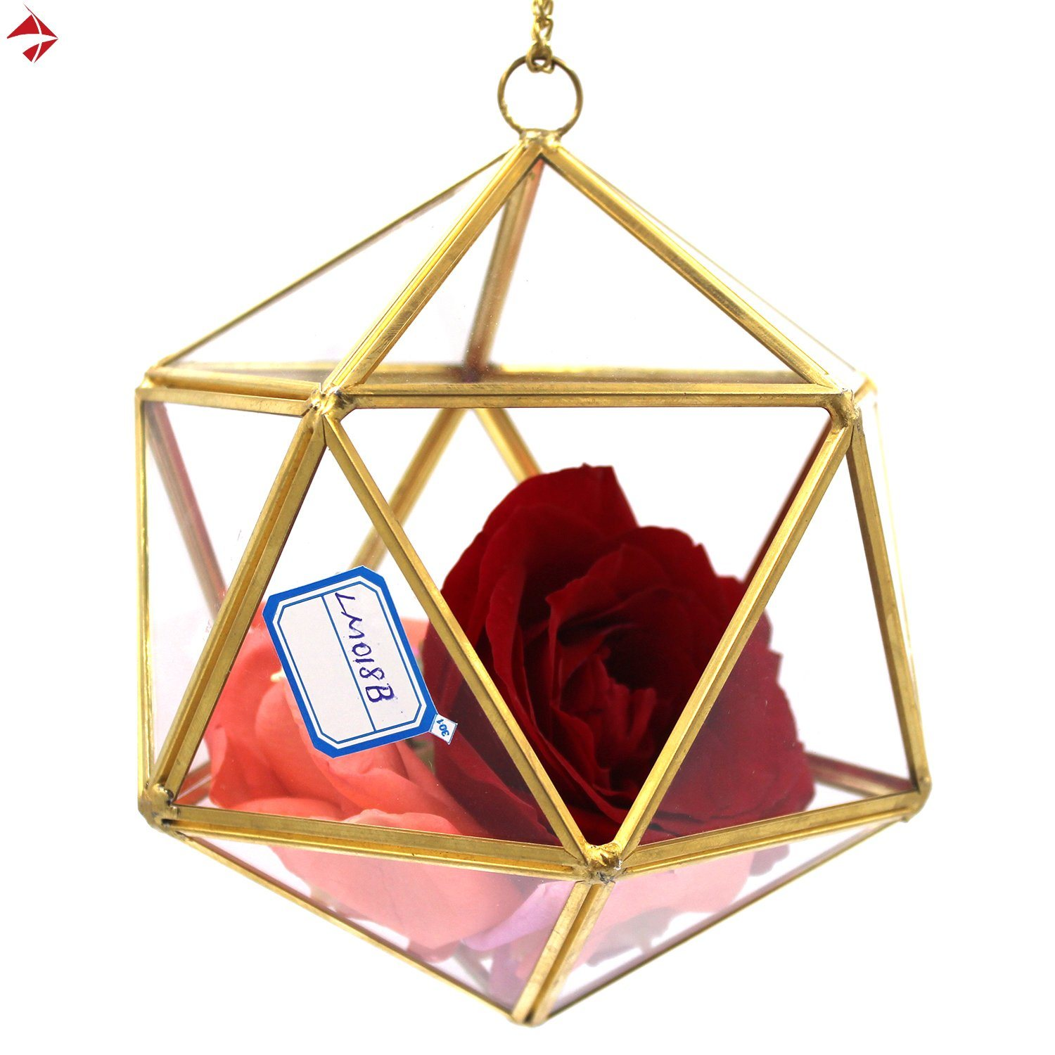 China Indoor Hanging Planters Glass Terrarium Decor For Sale Photos Pictures Made In China Com