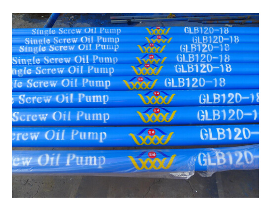 Coalbed Methane Downhole Screw Pump/Pcp pictures & photos