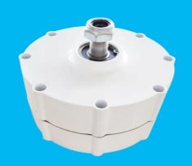 400w 24v Low Rpm Pmg Permanent Magnet Generator Alternator Shj 400m