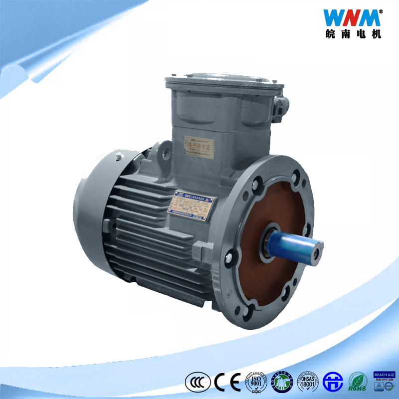 Wholesale Gas Motor - Buy Reliable Gas Motor from Gas Motor