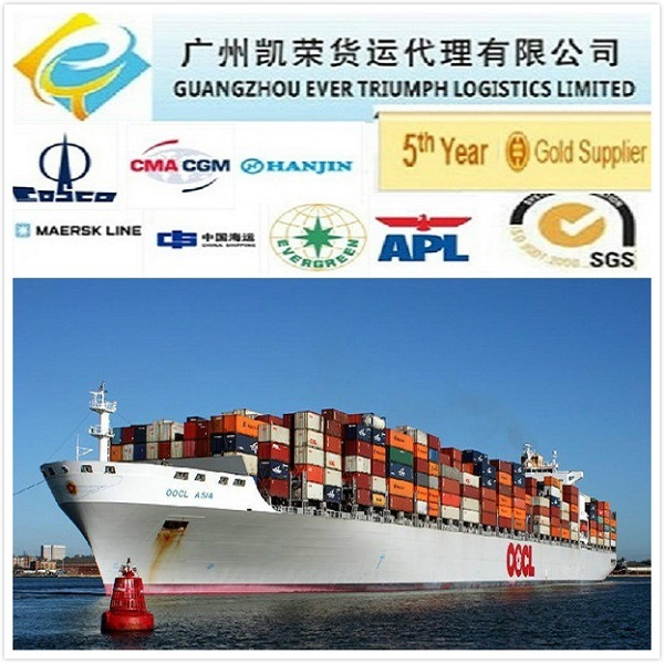 [Hot Item] Professional Sea Freight Forwarder From Ningbo to Philippines