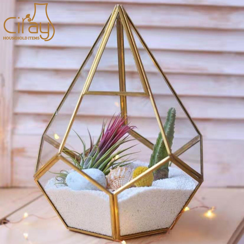 China Wholesale Irregular Glass Gold Geometric Terrarium For Tabletop Succulent Plant Planter China Glass Terrarium And Glass Vase Price