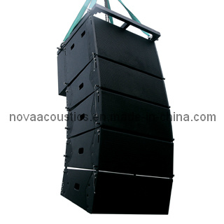 Double 10 Inch Compactive Line Array (CA-0010)