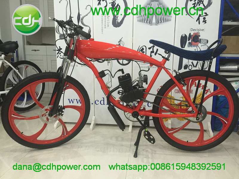 Bicycle; Bike with Engine Kit pictures & photos