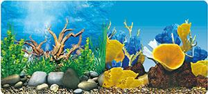 China Aquarium Background Double Sided New Design 9091 9096 China Aquarium Background And Plastic Price