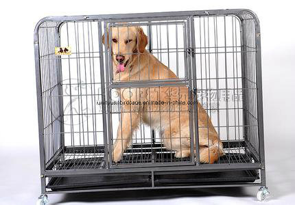 Factory Directly Supply Competitive Price Dog Cage pictures & photos