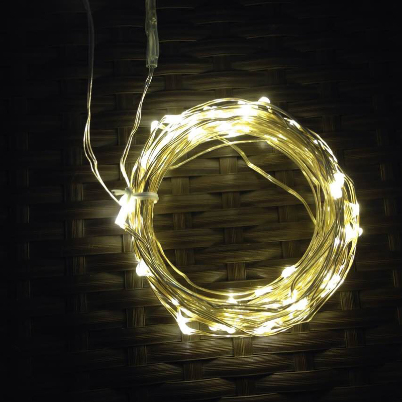 Hot Item Warmwhite Copper Wire String Lights With Plug Or Battery Supply