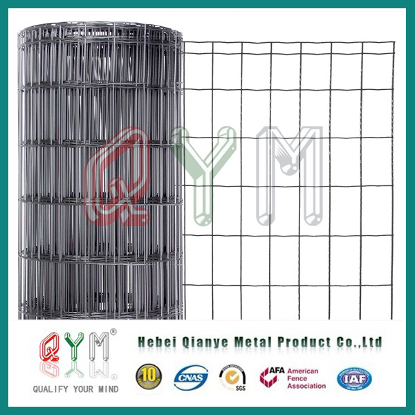 China Electro Galvanized Wire Mesh/ PVC Coated Welded Mesh Roll ...