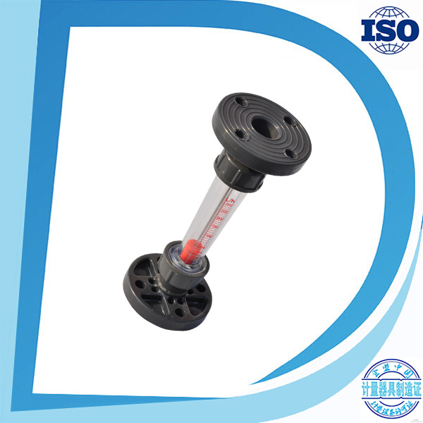 Bsp Thread Socket-End Flange Long Tube Shorttube Plastic Flowrate Flow Sensor Transparent Tube Plastic Flowmeter