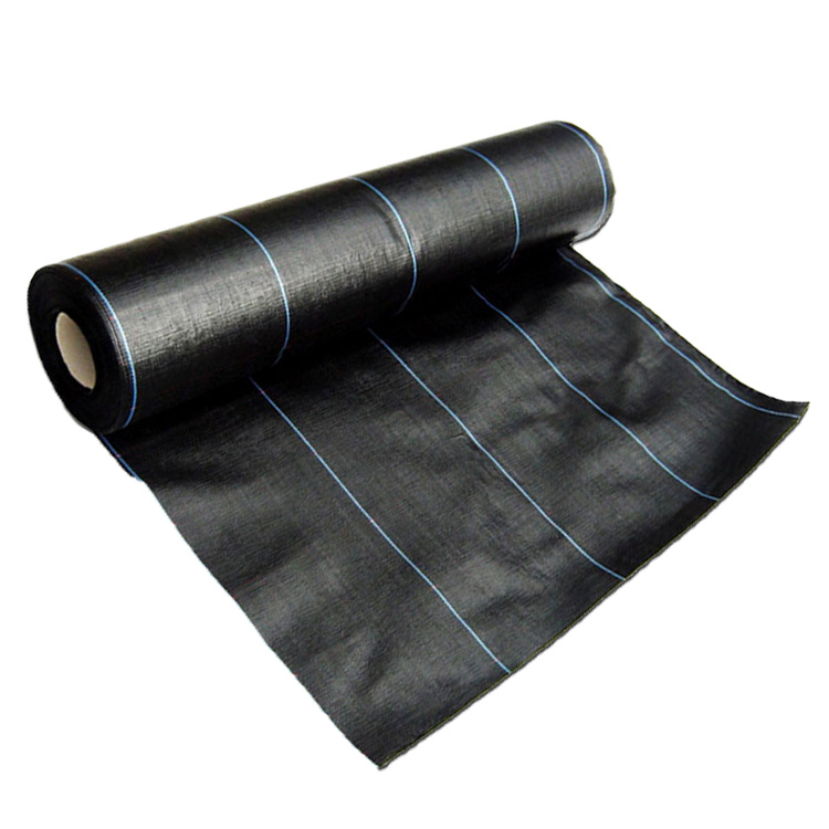 China Covering Felt Weedbarrier Sheet Pp Agriculture Vegetable Garden Weed Control Covers Landscape Fabric Weed Mat China Covering Felt Weedbarrier Sheet Weed Mat And Weed Control Landscape Fabric Weed Mat Price