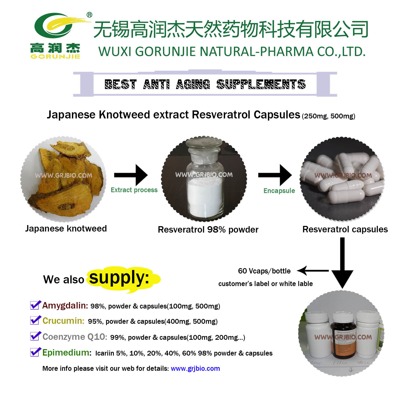 China Anti Aging Supplement Resveratrol Capsules 500mg China