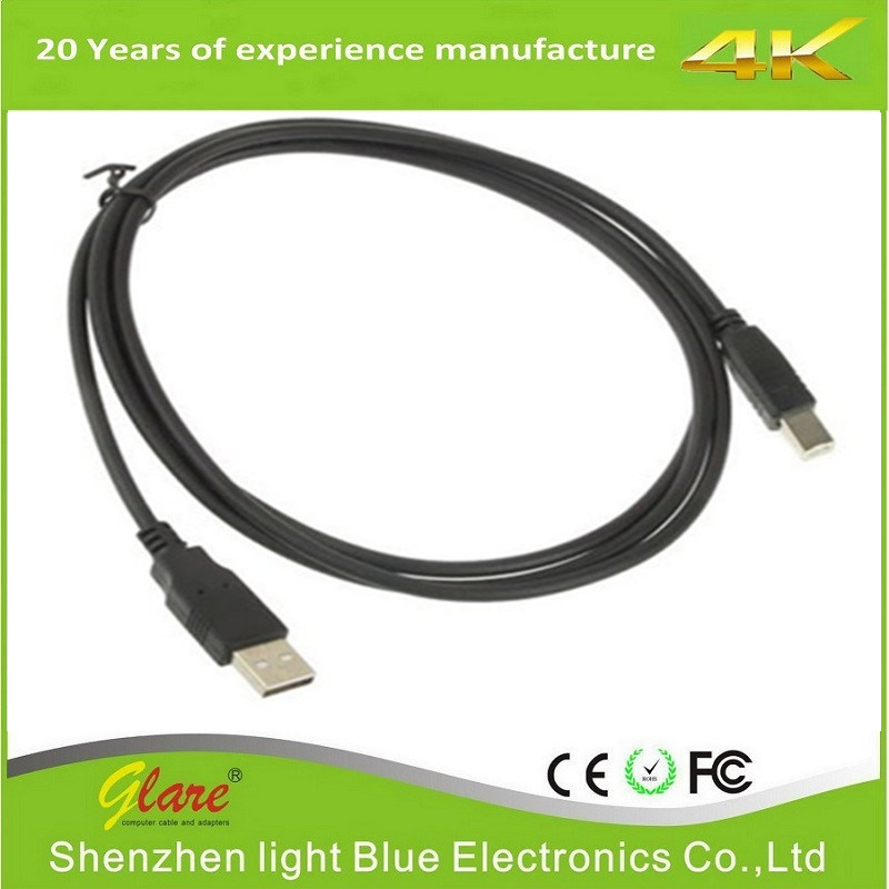 2.0 USB Am to Bm Cable for Printer Scanner Camera pictures & photos