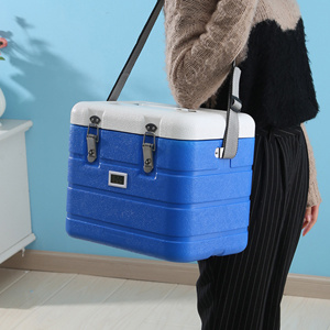 17L Insulated Portable Plastic Ice Chest
