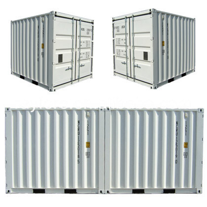 [Hot Item] Rayfore Standard Container Shipping Price 10 Feet