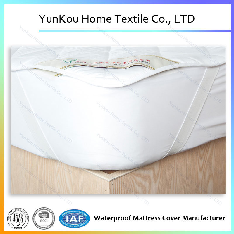 Quilted Mattress Protector Waterproof Fitted Sheet Mattress Cover