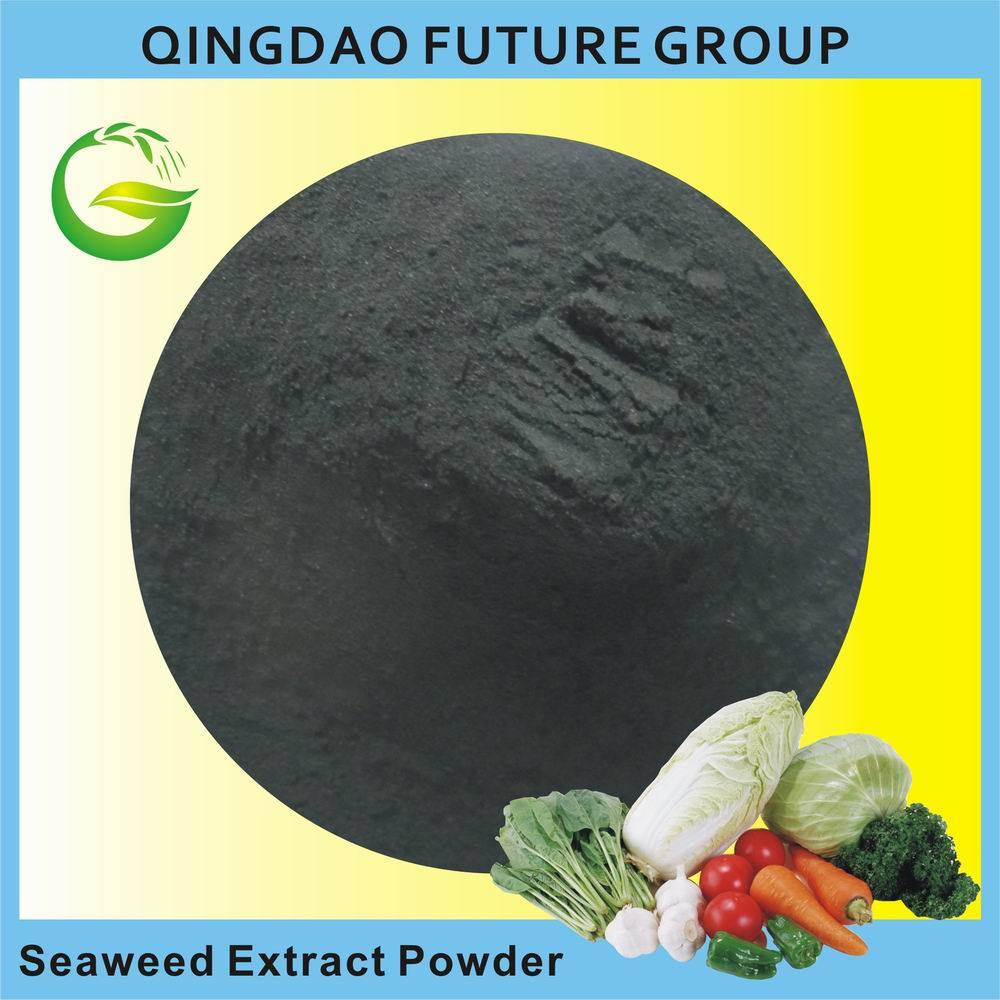Organic Seaweed Extract Powder Fertilizer