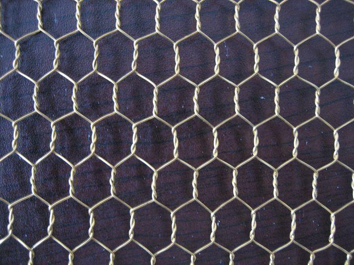 China Pvc Coated Chicken Wire Netting China Hexagonal