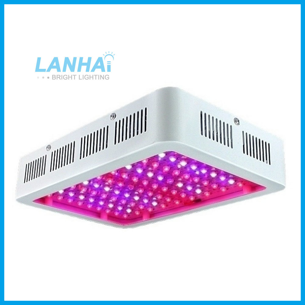 China Double Chips 600w Full Spectrum Hydroponic Indoor