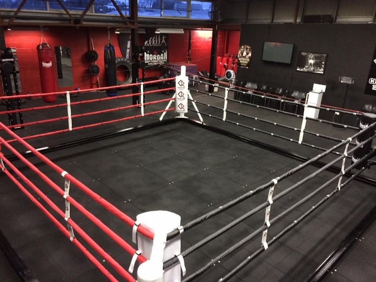 China Floor Mounted Custom Boxing Ring with Canvas and EVA ...