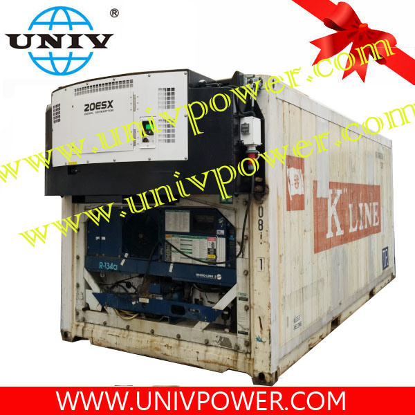 China Carrier Type Clip On Reefer Container Diesel