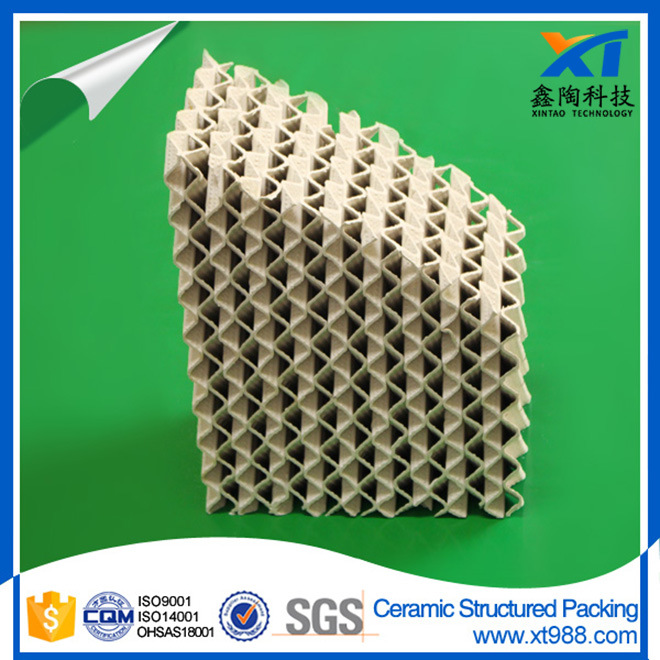 Ceramic Structured Tower Packing pictures & photos