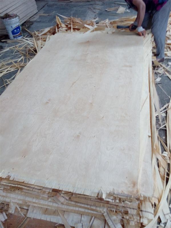 Bon China White Birch Plywood, Furniture Birch Plywood   China Birch Plywood,  Birch Face Plywood