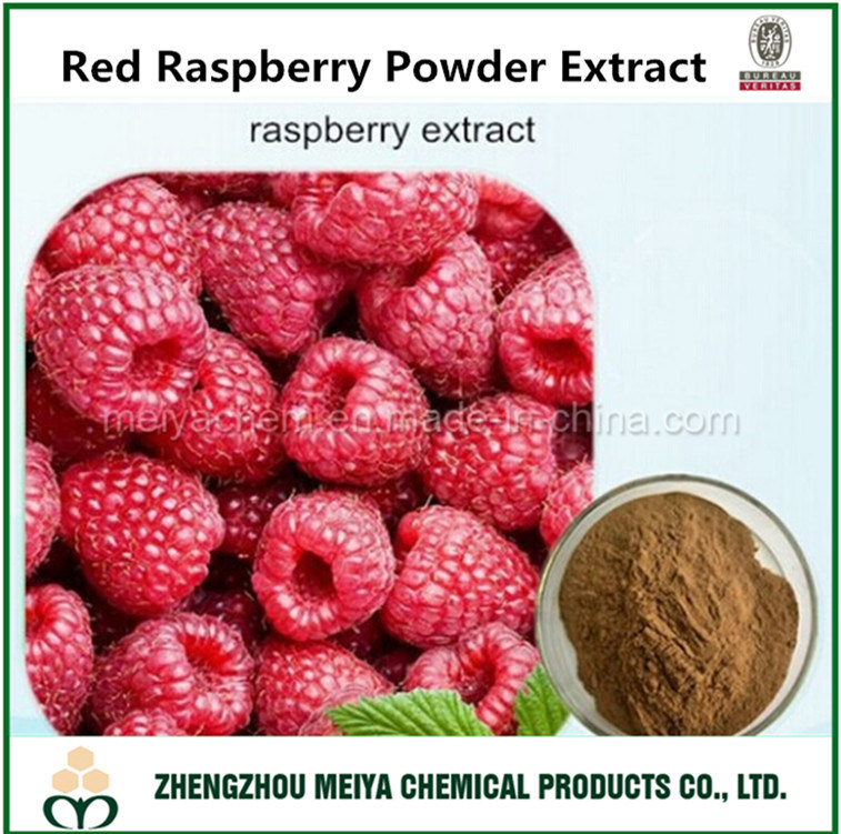 Best Quality Red Raspberry Powder Extract with Raspberry Ketone for Bodybuilding and Weight Loss