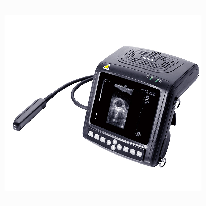 Kx5200 B Mode Veterinary Instrument Ultrasound Scanner for Big Animal