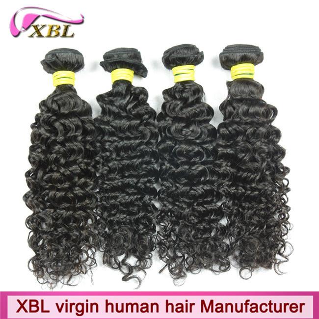 China 8a Kinky Curly Brazilian Human Hair Great Lengths Hair