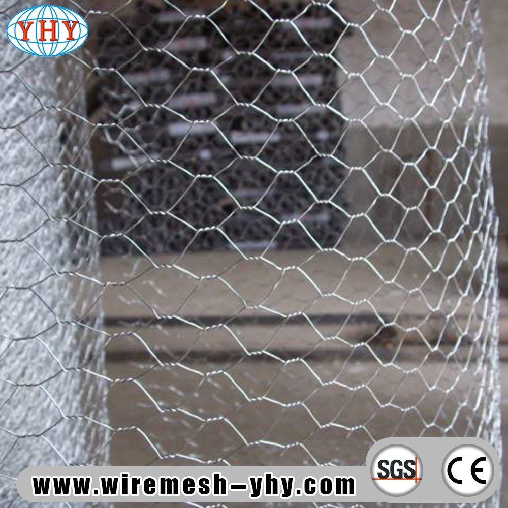 China 25mm 0.6mx50m Galvanized Hexagonal Chicken Wire Mesh for UK ...