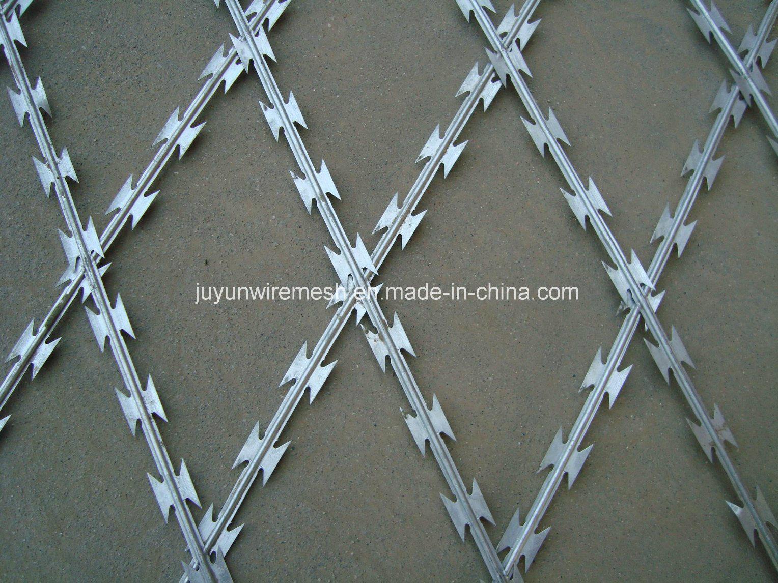 China Concertina Razor Wire/Galvanized Concertina Razor Wire/Hight ...