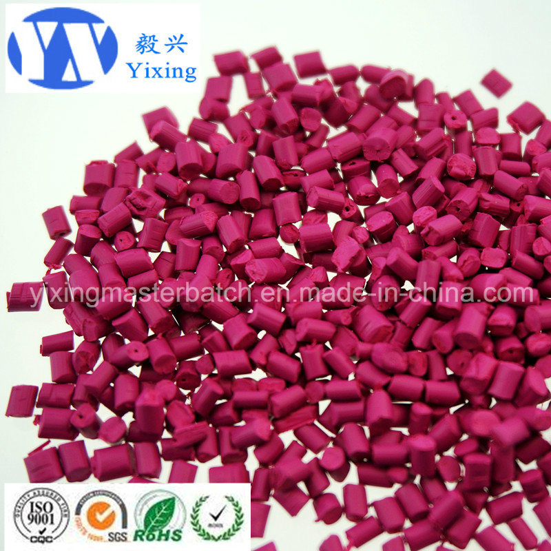 Polymer Pre-Coloured Granule Masterbatch/Pigment Granule/for Polymer Plastic PE Color