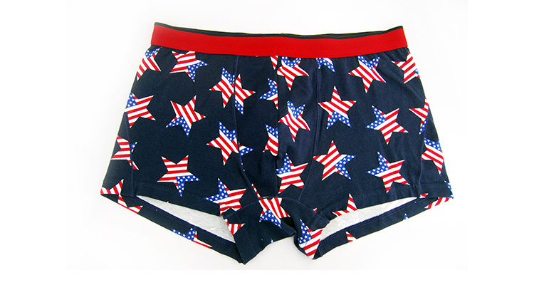 95%Cotton/5%Pendex Men Underwear Boxers Brief Fashion for 227