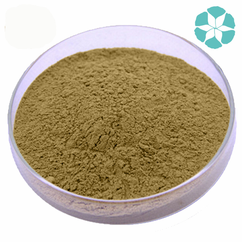 Lemon Balm Extract / Melissa Officinalis Extract / Rosmarinic Acid pictures & photos