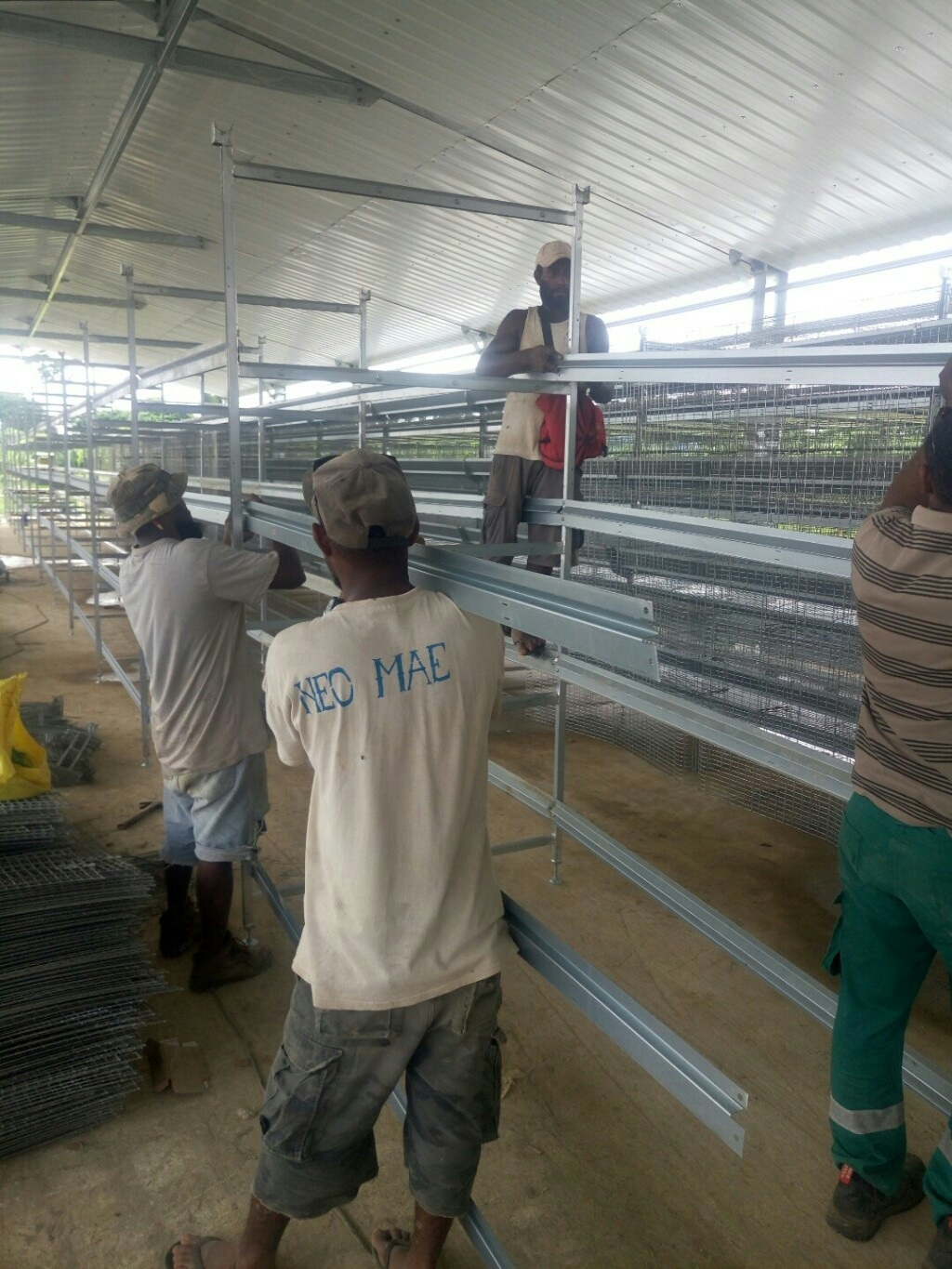 Economical Cascading Laying Hen Cage Equipment pictures & photos