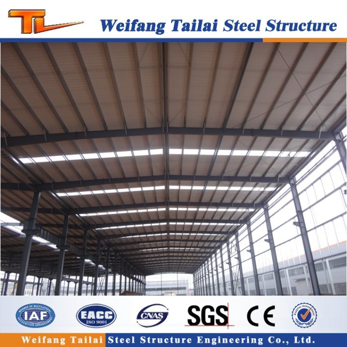 China Multi Span Prefabricated Steel Frame - China Steel Structure ...