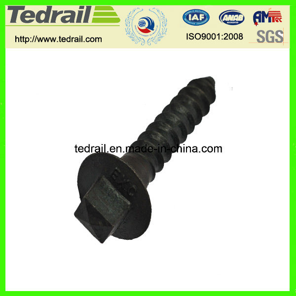 Rail Screw Spike with Big Disk