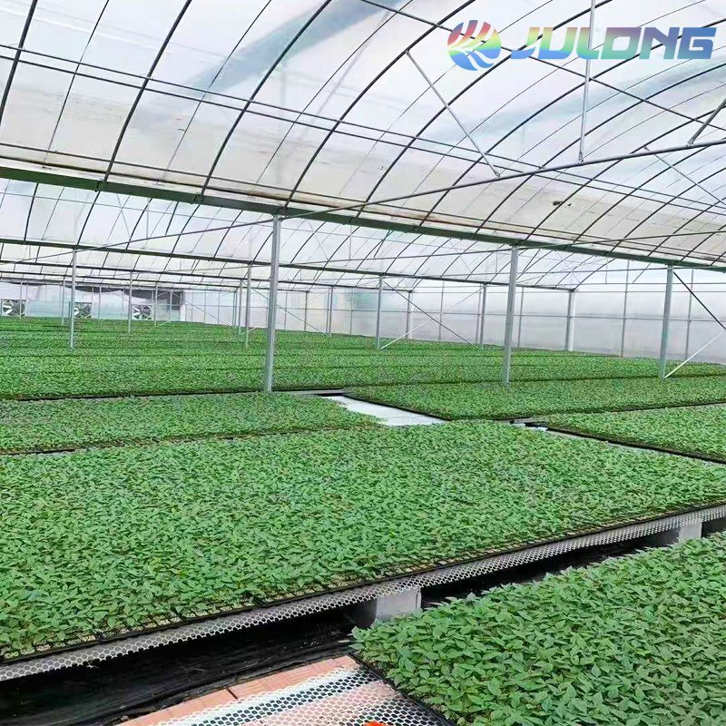 Building Materials Made Of China Agricultural Greenhouse With