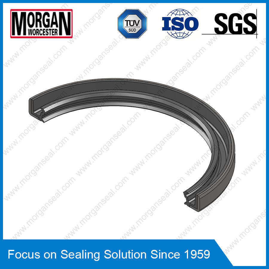 Tb Profile High Speed Double Lip Rotary Shaft Oil Seal