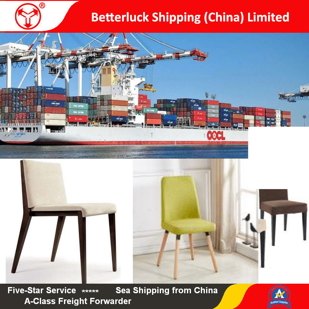 [Hot Item] Furniture Shipping from Foshan to Jeddah sea freight agent