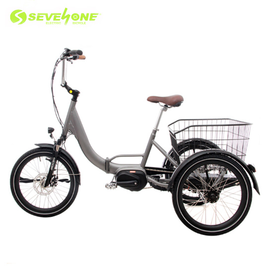 Aluminum Frame Suspension Electric Tricycle with Center Motor pictures & photos