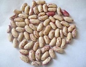 New Crop Light Speckled Kidney Beans (Long Shape) pictures & photos