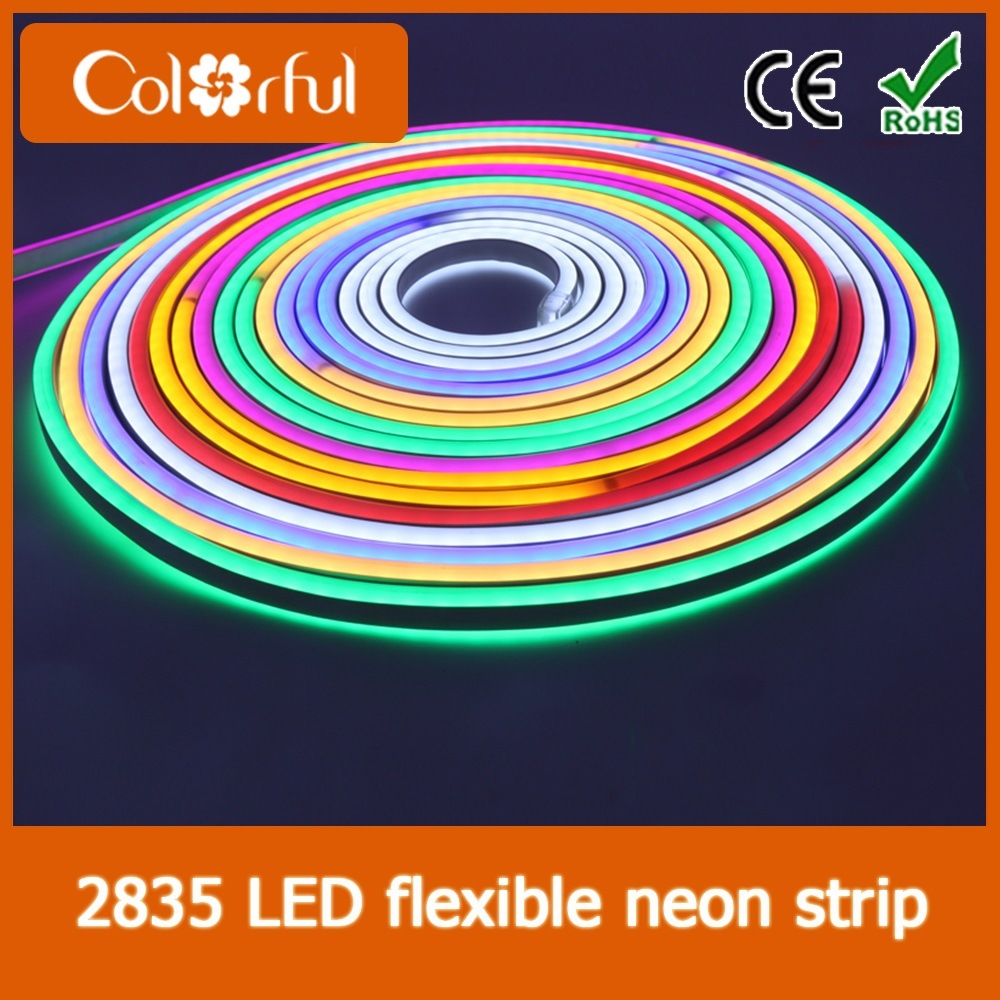 Hot Sale High Quality AC230V SMD2835 RGB LED Neon Flex