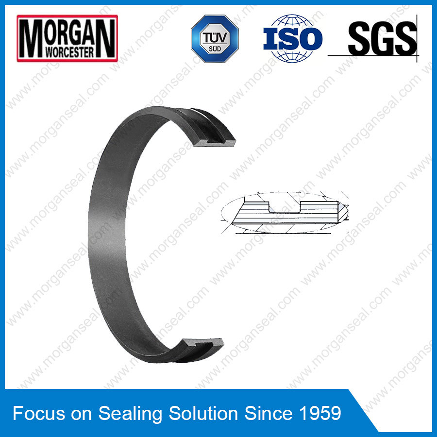 Fai Series Bearing Ring/Hydraulic Cylinder Rod Guide Ring Seal