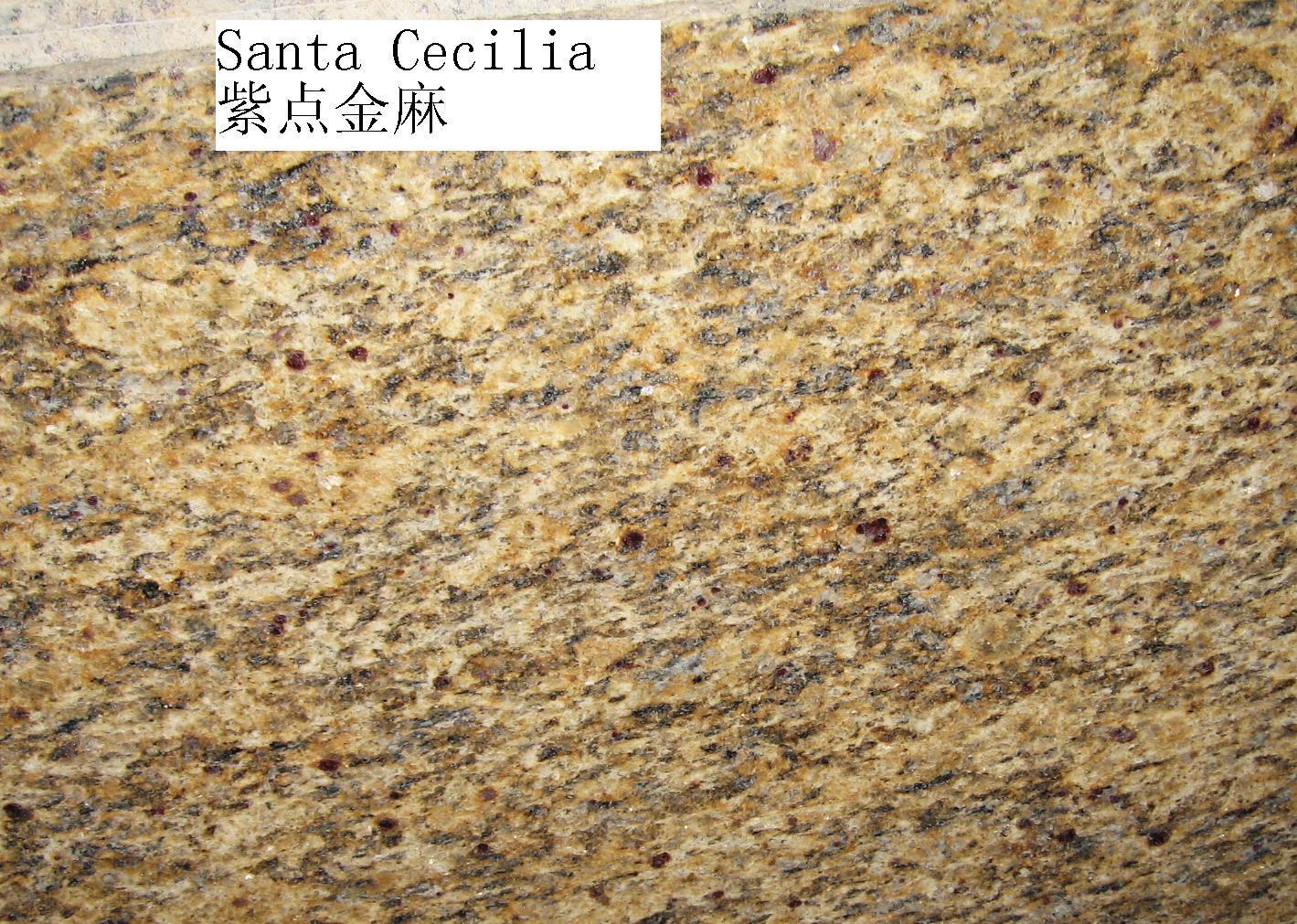 Polished Giallo Santa Cecilia Granite
