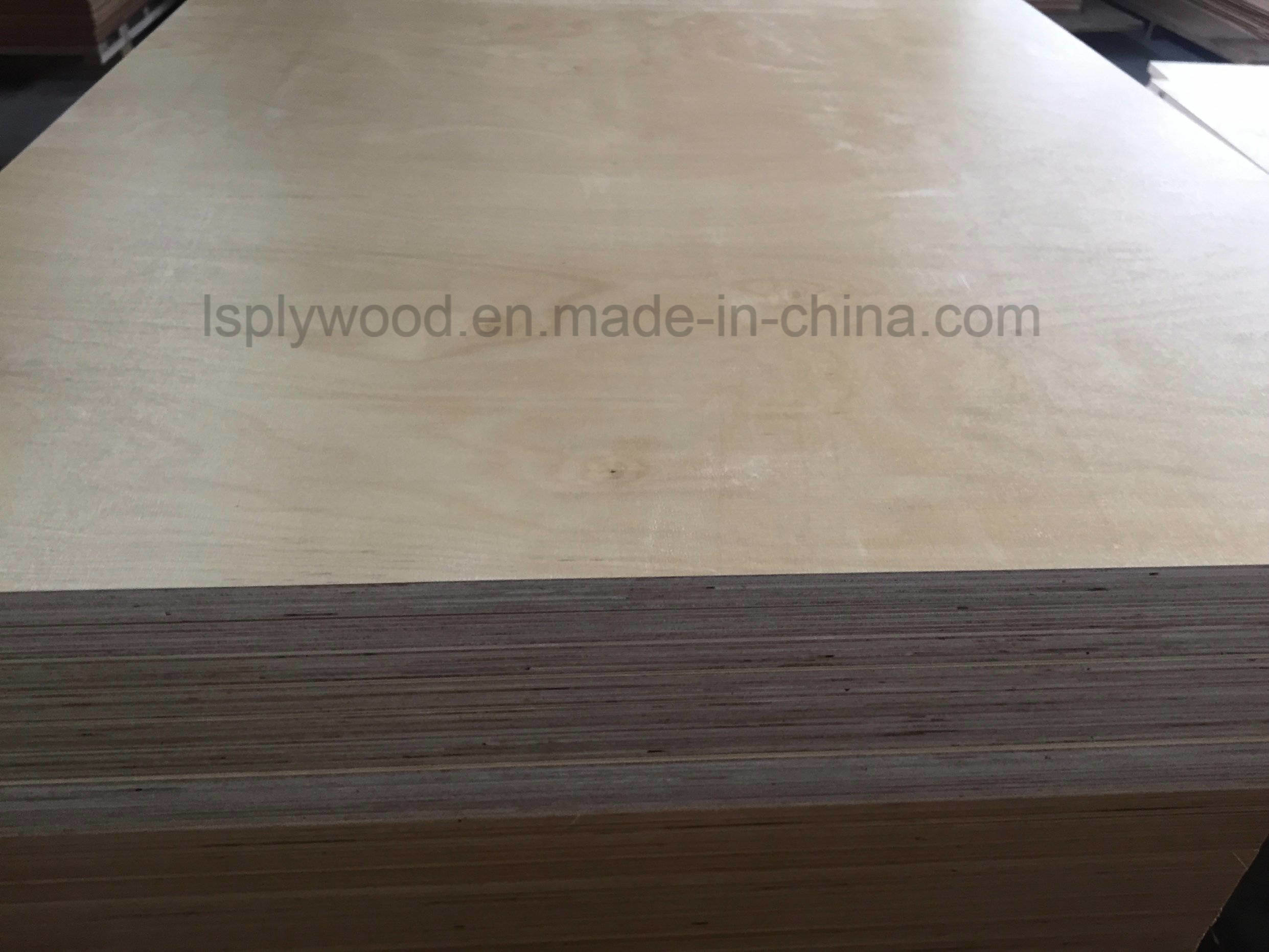 China Special Discount Molded Plywood China Birch Plywood  China