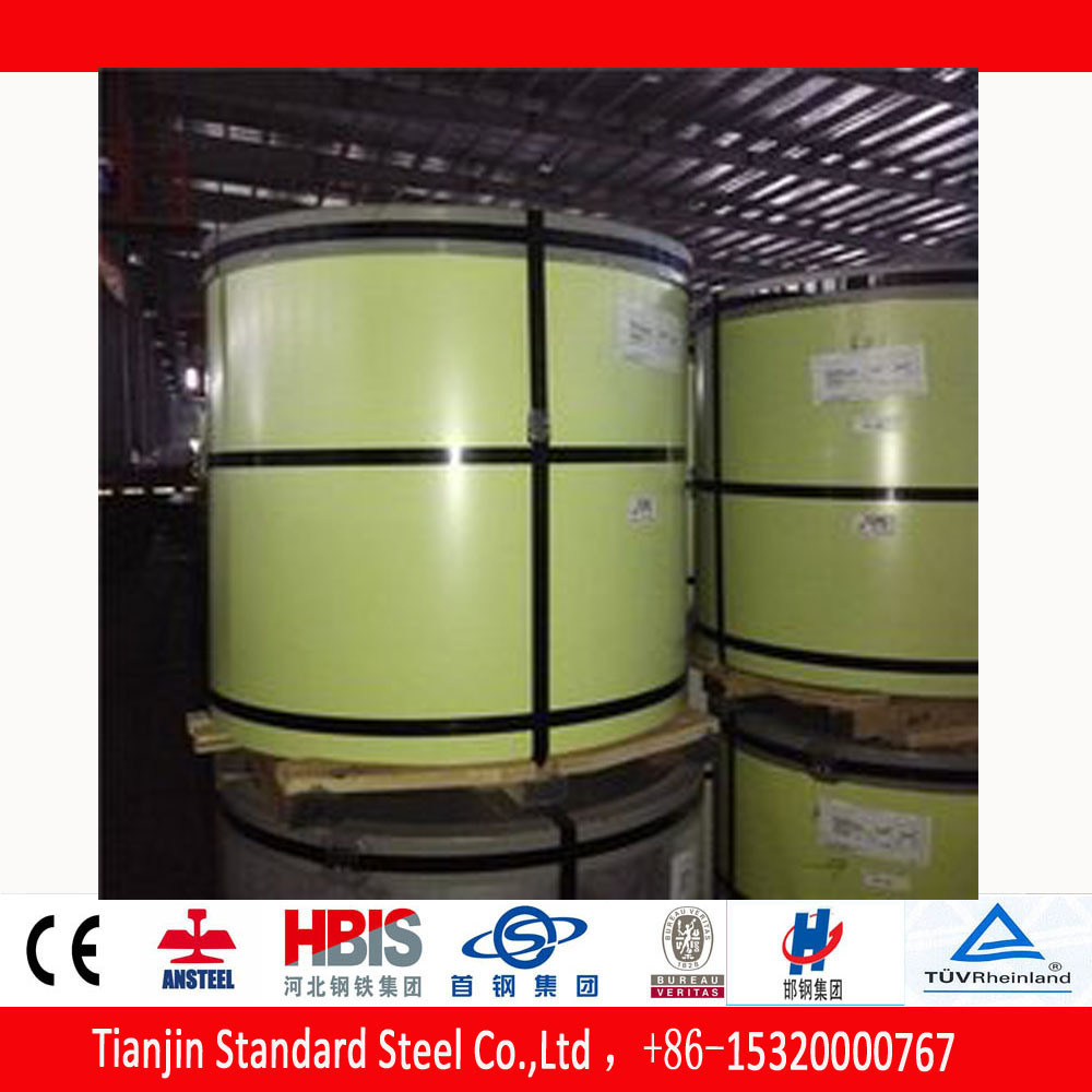 China Ral 1013 Oyster White Prepainted Color Coated Steel Coil ...