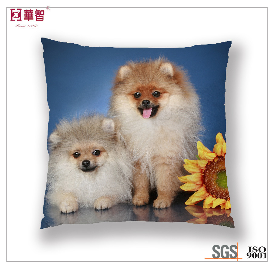 Digital Printed Cat Cushion Cover pictures & photos
