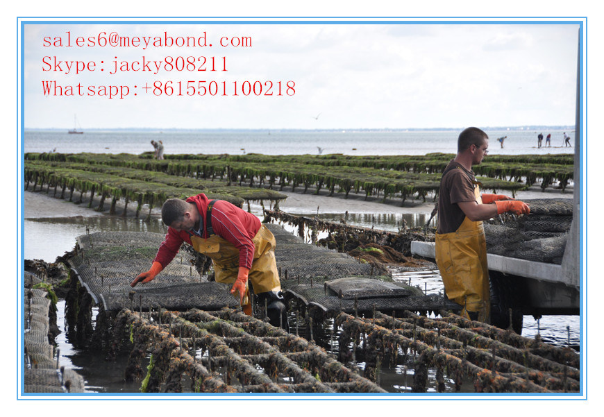 Aquaculture Mesh/Oyster Mesh/Oyster Bag Factory pictures & photos