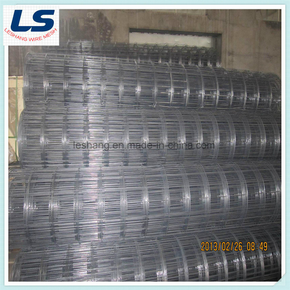 China Welded Wire Mesh 150X150mmx3.0mx100m - China Welded Wire Mesh ...